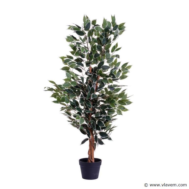 Kunstplant, Ficus ca. 120 cm
