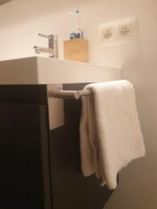 1 st. Handdoekhouder 70cm - Chroom