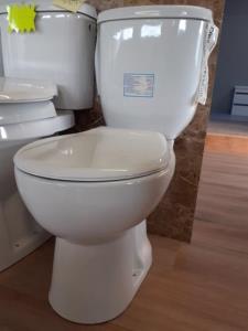 toilet clasic
